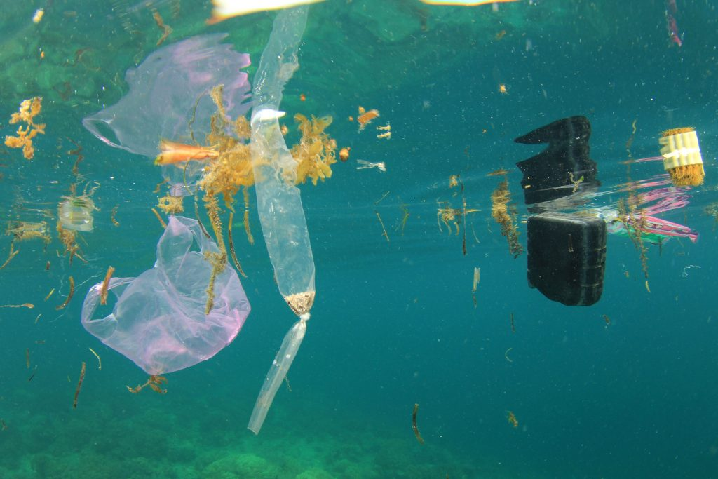 Plastic Pollution in Ocean - ECOS Cares