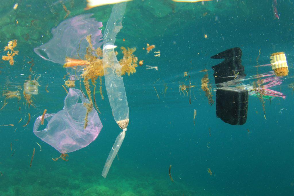 Plastic Pollution in Ocean - ECOS Cares